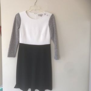 Ann Taylor Loft Dress Sz 4p